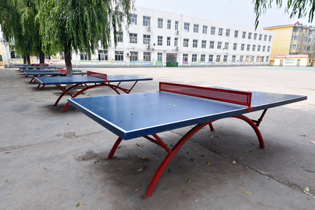 table: Table tennis table