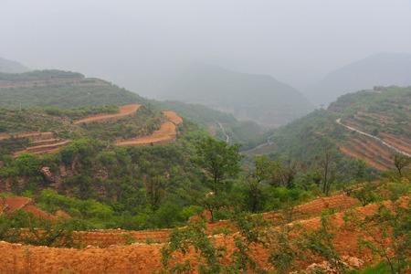 Terraced fields in Taihang Mountain