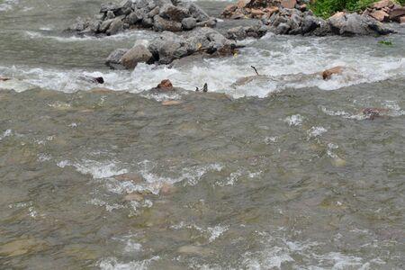 river water 版權商用圖片
