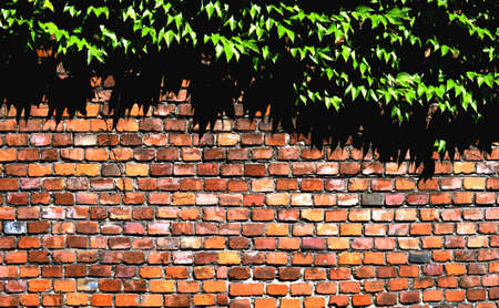 Fence Stock Photo - 14469934