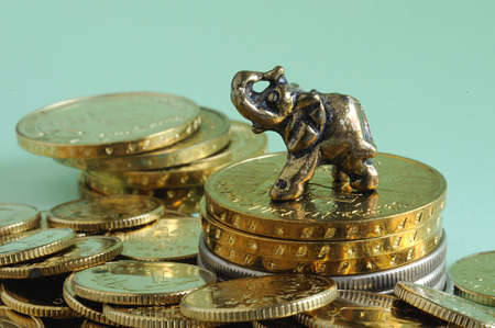 Elephant among gold coins