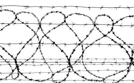 Barbed wire isolated on white, grayscale