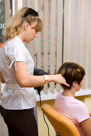 Hair stylist working on a client Stock Photo - 1585198