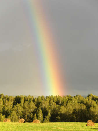 Rainbow over farm field and forest photo