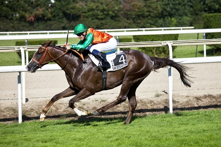 horse race Editorial