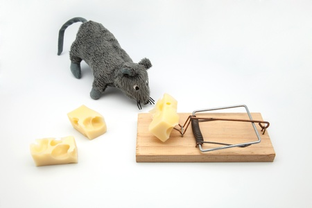 pitfall: mouse of cloth and pitfall with cheese