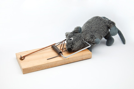 mouse of toy caught in a mousetrap photo