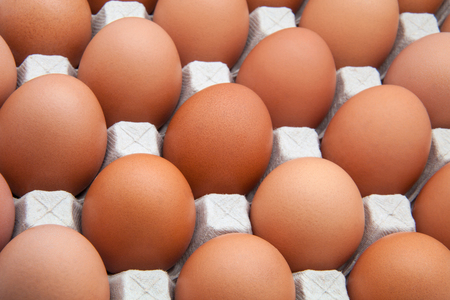 pasteboard: funks eggs in a pasteboard for eggs