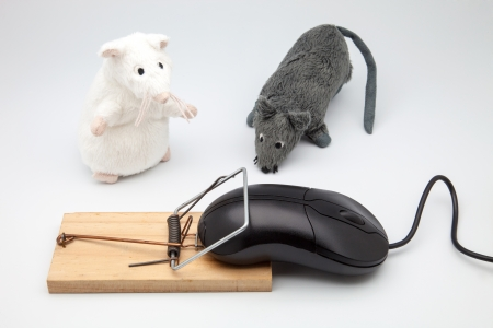 graceful scene of trapped mice