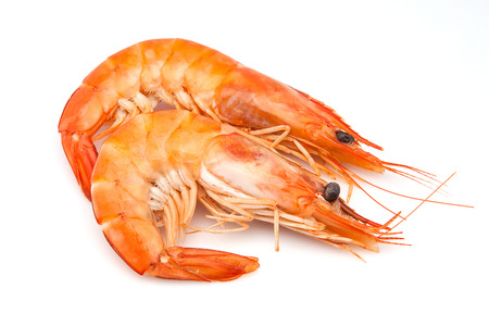 un healthy: two langoustines on white background
