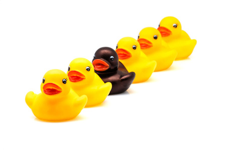 marginalized: ducks in line on a white background Stock Photo
