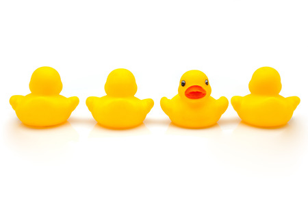 line of yellow ducks of gum Stock Photo