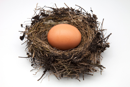 measures white house: birds nest with egg on a white background Stock Photo