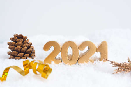 golden numbers 2021, fir cone and serpentine in the snow.