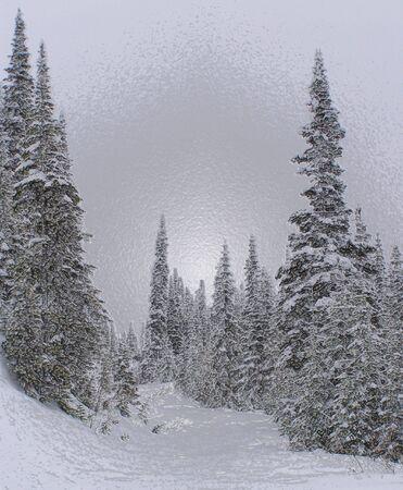 Snowy Trail 3