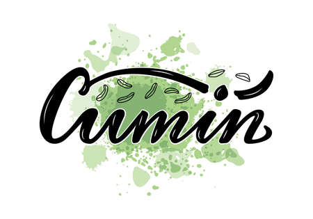 Vector illustration of cumin lettering for packages, product design, banner, sticker, spice shop price list and decoration. Handwritten word with scattered seeds for web or print