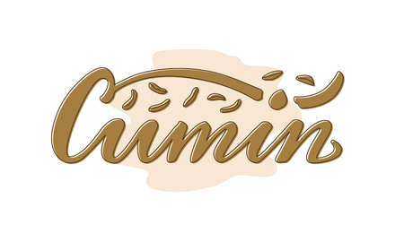 Vector illustration of cumin lettering for packages, product design, banners, stickers, spice shop price list and decoration. Handwritten word with scattered seeds for web or print Vektoros illusztráció