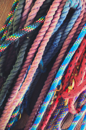 lead rope: Colorful lead ropes hanging, in a barn, vertically captured at an angle