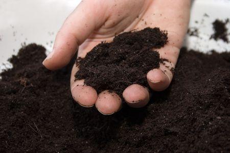 gleby w parze Zdjęcie Seryjne
