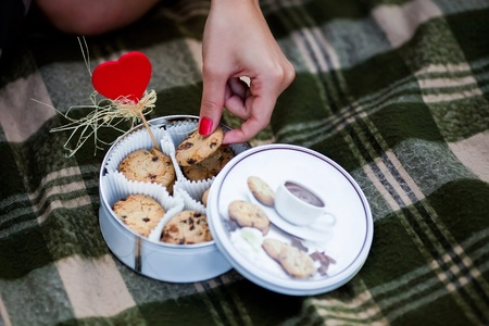 "WomanРІР'в""ўs hand holding one of cookies from the tin box standing on the checked plaid Stock Photo - 16933657"