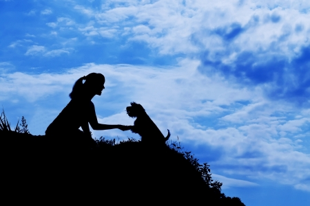 silhouette of siting girl train a dog