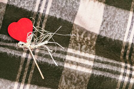 greem: red Heart on stick with copy-space against blanket background Stock Photo