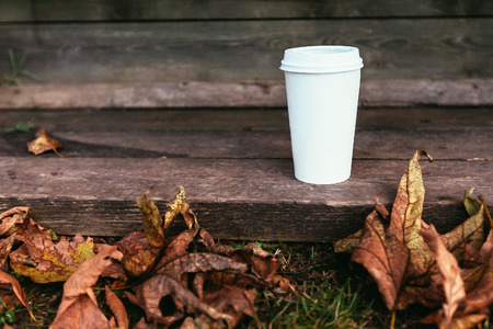 white paper coffe cup with brutal autumn leaves with place for sign