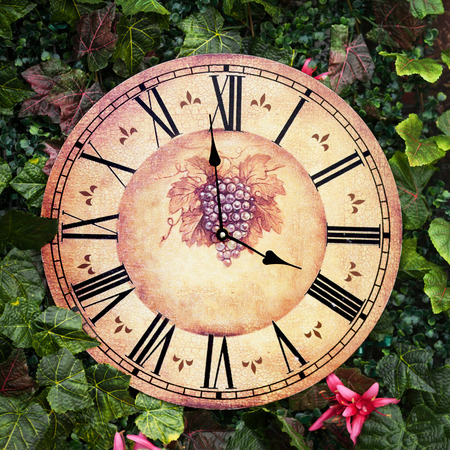 them: Old antique wall clock with grape picture on them