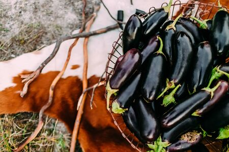Eggplants in an iron basket on the background of cowhide Stock Photo