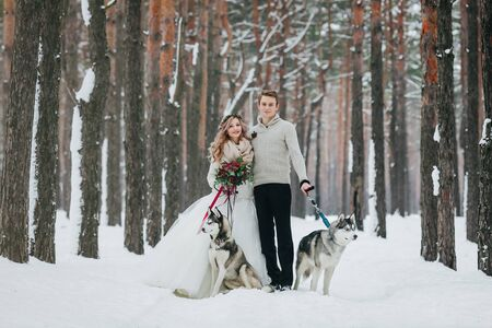 Beautiful bride and groom with two siberian husky are posed on background of snowy forest. Artwork. Copy space