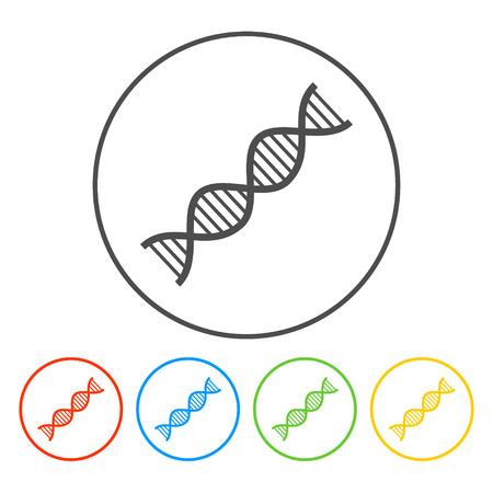Vector DNA icon. Flat vector illustrator Eps Vector