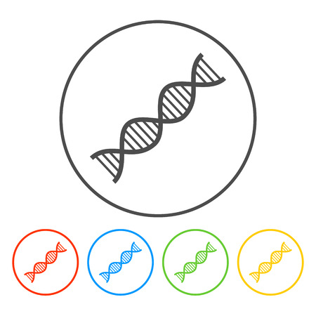 Vector DNA icon. Flat vector illustrator Eps
