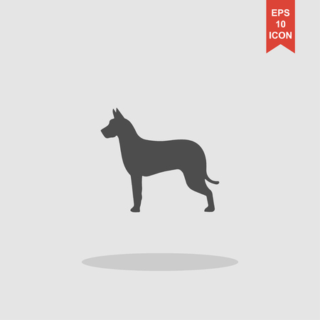 rabies: dog icon. Modern design flat style EPS