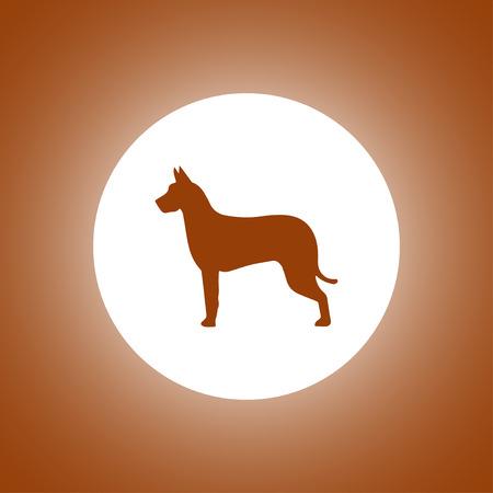 wścieklizna: dog icon. Modern design flat style Ilustracja