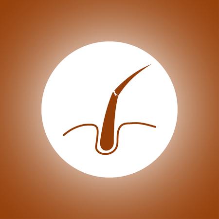 sebaceous: Hair, Web icon. vector design. Flat design style