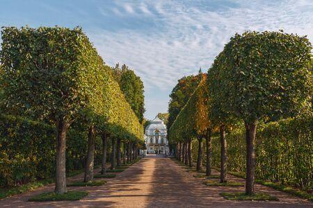 katherine: In the Catherine Park, Pushkin, Tsarskoe Selo, St. Petersburg