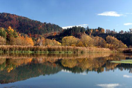 Beautiful autumn colors photo