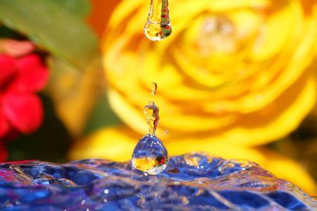 phantasy: Water Drops close-up Stock Photo