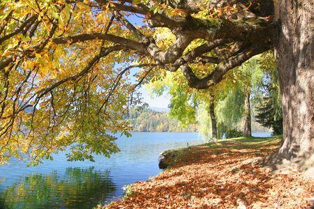 Beautiful Autumn Stock Photo - 3285682
