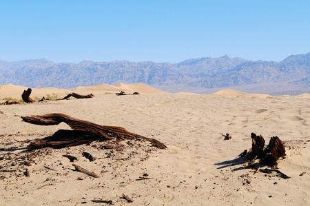 Beautiful and hot Death Valley Desert, US Stock Photo - 13318019