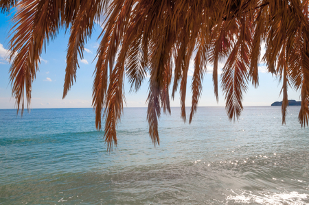 arbor: Palm Leaf Arbor at the Crete Island sea coast.
