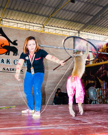 primacy: Ratchaburi, Thailand - May 24, 2014: Monkey show at Damnoen Saduak Floating Market, Thailand.Monkey theatre has long been performed in Thailand at local fairs or held at temples during religious ceremonies. Editorial