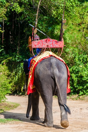 narration: Nakhon Pathom, Thailand - May 24, 2014: Mahout and his elephant at Samphran Elephant Ground & Zoo on May 24, 2014 in Nakhon Pathom,Thailand. Visitors can watch an elephant show complete with dramatic sounds and narration and see demonstrations of elephant