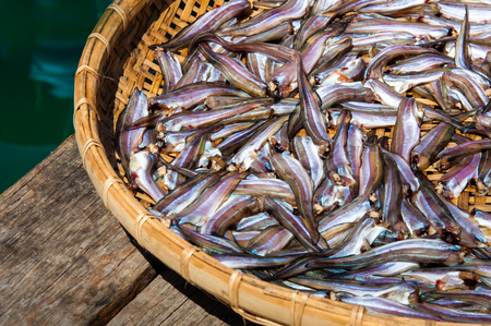 dryed: Small Fish drying on bamboo basket in the sun, color filter applied Stock Photo