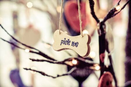branded product: Pick me message on small wood board, vintage concept Stock Photo
