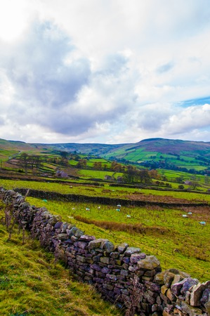 yorkshire dales: Green Countryside landscape in Yorkshire Dales National Park, United Kingdom