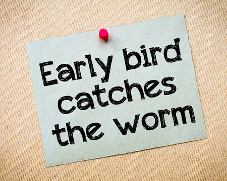 Early bird catches the worm Message. Recycled paper note pinned on cork board. Concept Image