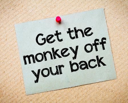 背中のメッセージの猿を取得します。リサイクル紙のノートは、コルクボードに固定。コンセプト イメージ