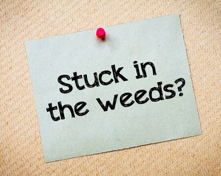 idioms: Stuck in the weeds? Message. Recycled paper note pinned on cork board. Concept Image
