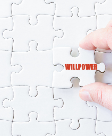 willpower: Last puzzle piece with word  WILLPOWER. Concept image